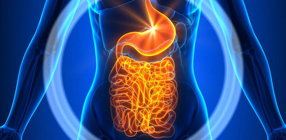 maladies inflammatoires de l'intestin