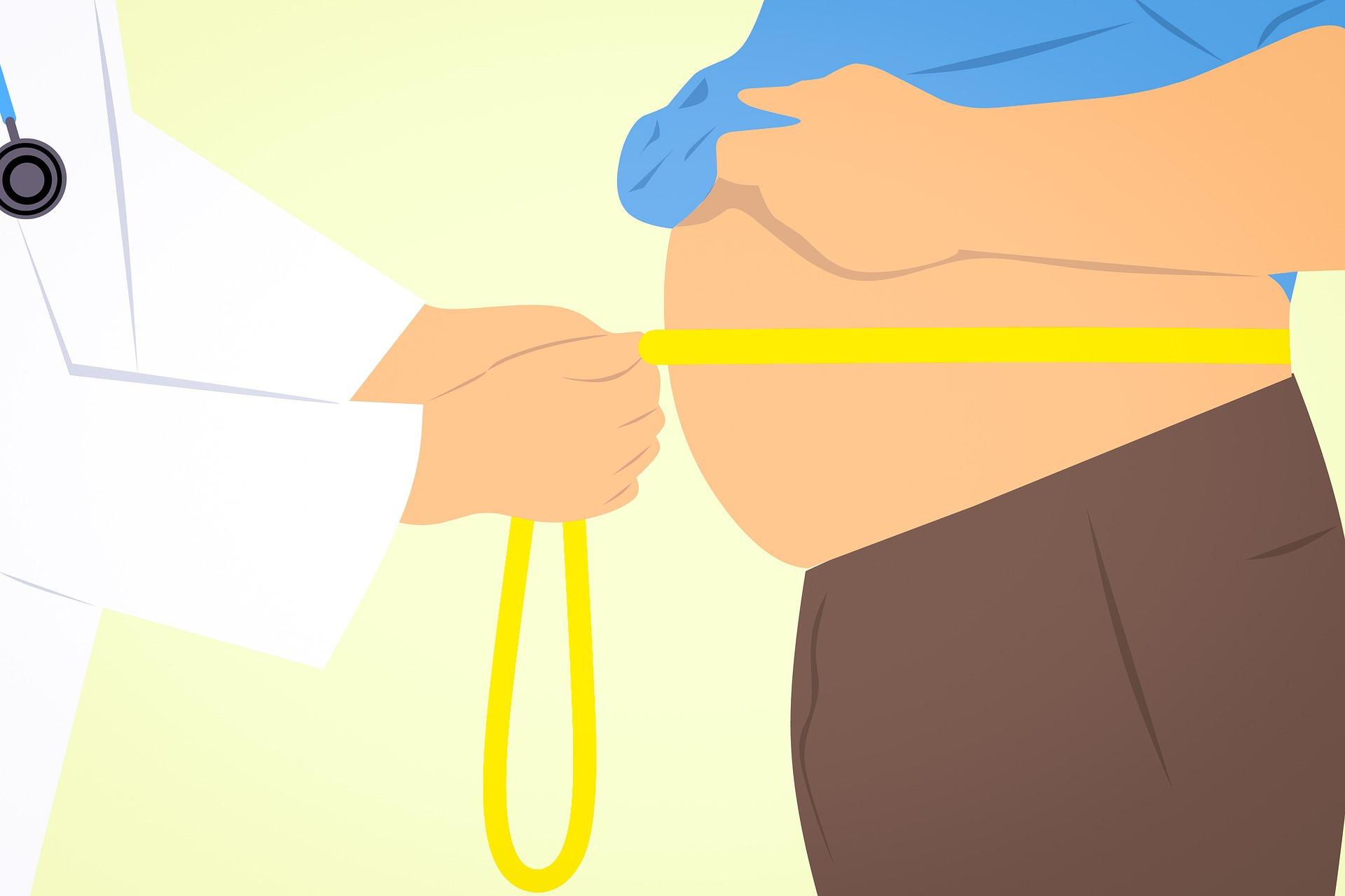 journée mondiale obésité